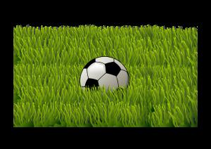 Blog PostBefristung des Arbeitsvertrags eines Lizenzspielers der Fußball-Bundesliga